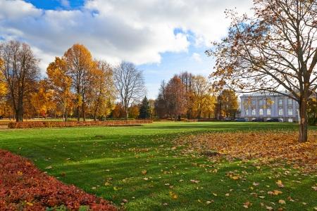 Golden autumn in the city park.