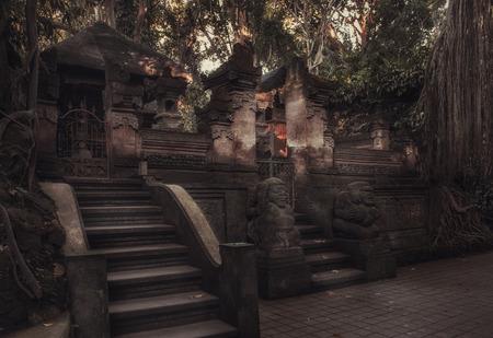 Sacred Monkey Forest Sanctuary. Ubud. Bali. Indonesia