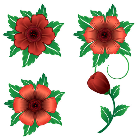 Red flower collection Vector