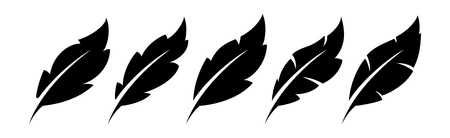 Feather vector icons illustration on white background.
