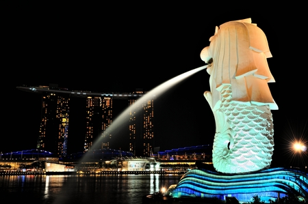 Merlion night view