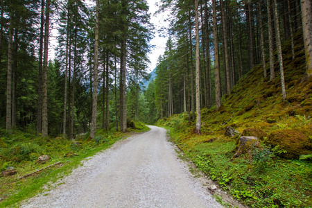 trickles: Small route in high mountains Alps Austria