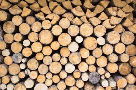 Pile of wood in different shapes and colors photo