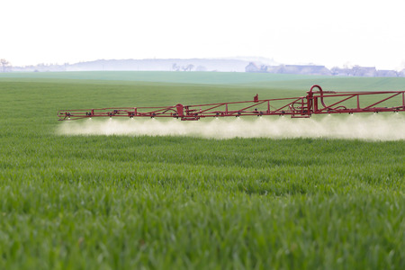 farm implements: Spraying the herbicides on the green field Stock Photo
