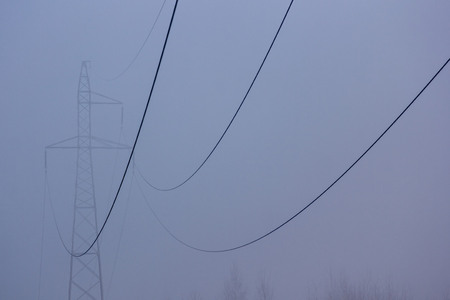 mistic: The powerlines in the foggy mistic morning
