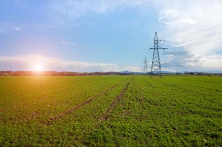 Zonsondergang over de stroomlijnen op het grote groene veld Stockfoto