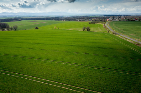 Aerial view of the large green field in spring season Standard-Bild