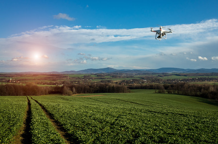 Small drone is flying above the large green field Standard-Bild