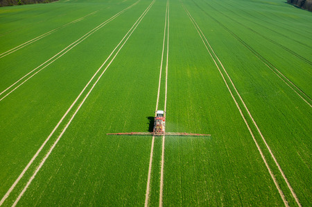 aerial views: Aerial view of the tractor spraying the chemicals on the large green field