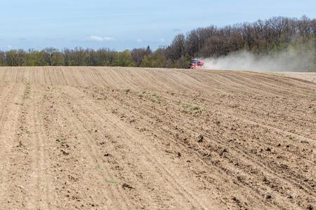 siembra: La siembra del maíz en la temporada de primavera