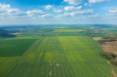 aerial: Aerial view of the large green field in spring season Stock Photo
