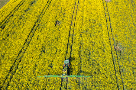 Aerial view on the tractor spraying the chemicals on the rape field 免版税图像