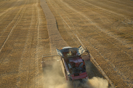 agriculture machinery: Aerial view on the combine working on the field Stock Photo