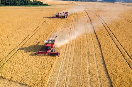 cosecha de trigo: Vista aérea de las cosechadoras y tractores que trabajan en el campo de trigo grande Foto de archivo