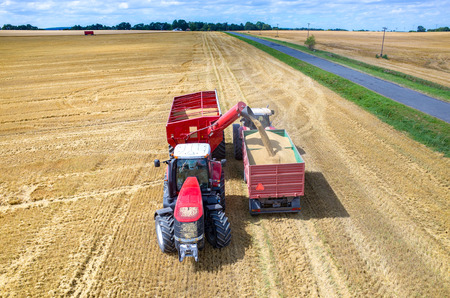 field crop: Aerial view on the combines and tractors working on the large wheat field
