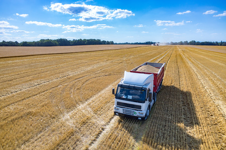 Aerial view on the truck filled with the wheat seeds