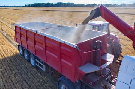 Aerial view on the combine filling the truck with the wheat seeds