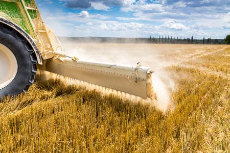 大規模な麦畑に石灰のアクション 写真素材