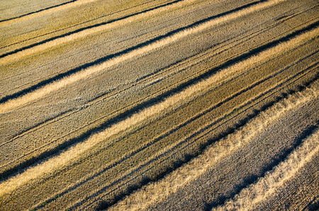stubble: Aerial view on the large wheat stubble Stock Photo
