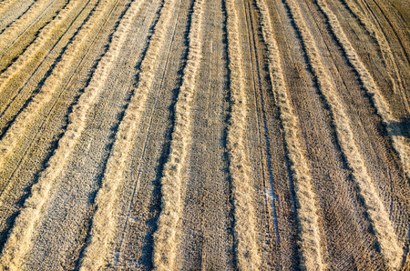 Aerial view on the large wheat stubble Stock Photo