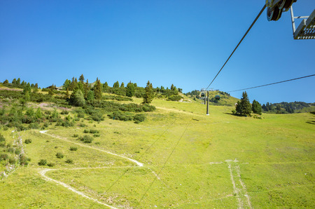 hill station tree: Large view on the ski station in summer