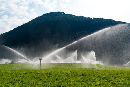 sprinklers: Large view on the sprinklers working on the field