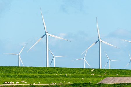 Large view on the windmills on the field Stock Photo