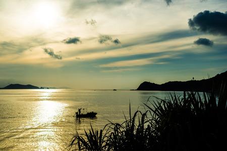 golden: Golden sea