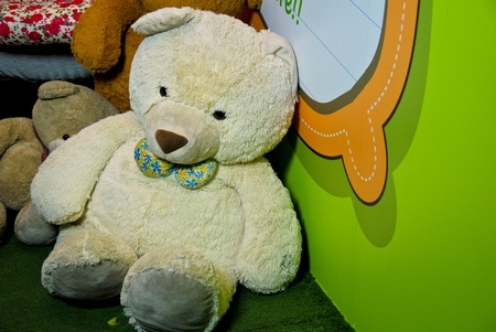 A big teddy with green background photo