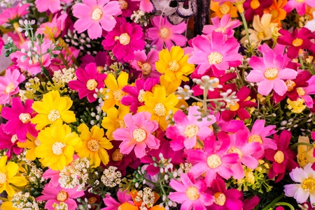 Many colorful cotton fabric flowers Stock Photo - 13272139