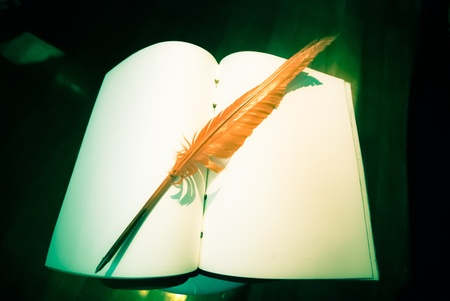 poet: paper with a orange quill pen - Vintage concept with feather - Quill on old blank book Stock Photo