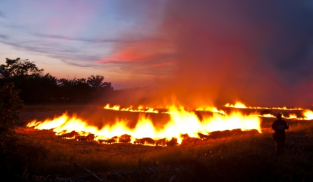 A silhouette man - fire burning rice farm in the eveningpower Stock Photo