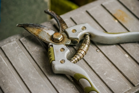 pruning scissors: old gardening Tool - pruning scissors - Garden Pruner - Dirty pruner - gardening secateurs for cutting branches
