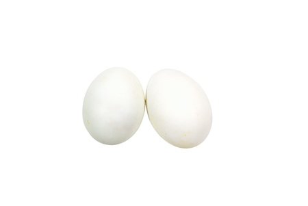 Two white eggs isolated on white background Stock Photo