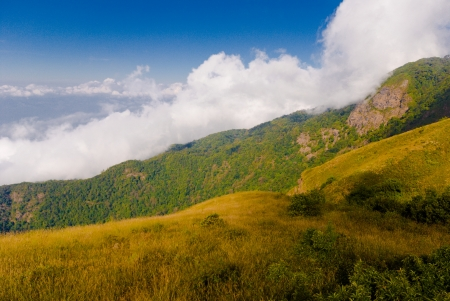mountain with cloud - Dramatic clouds with mountain and tree - cloud and fog mountain valley landscape in blue sky photo