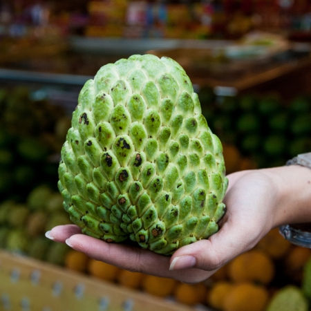 custard apple: Sugar or custard apple in hand on fruit market background