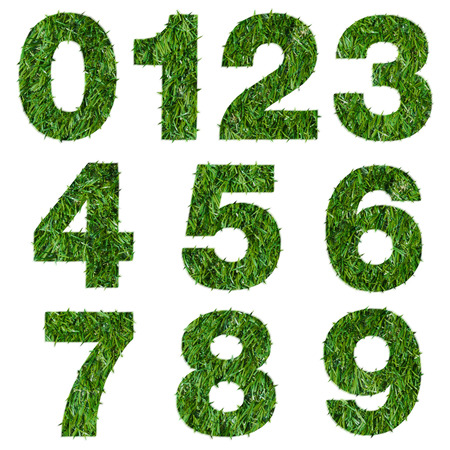 Numbers made of green grass isolated on white photo