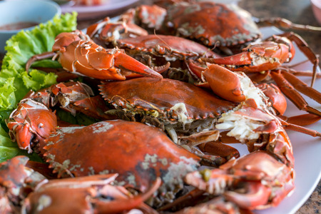 crab meat: Hot steamed red crab prepare to eat on a plate Stock Photo