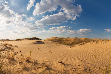 Beautiful desert landscape with dunes. Walk on a sunny day on the sands.