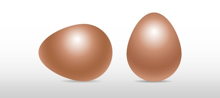 Vector single brown realistic chiken eggs isolated on white background with soft shadow. Perfect Easter holiday template.Three-dimensional illustration. Eps 10. Standard-Bild - 122364077