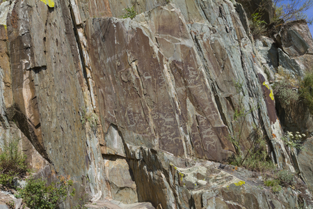 Mountain rock carvings in Altai. Close up.