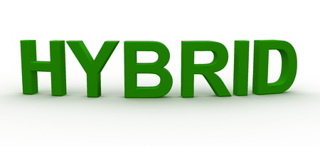 3D Rendered Hybrid word