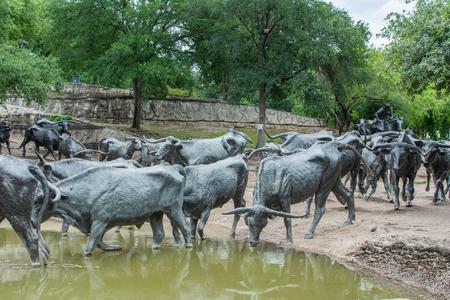パイオニア プラザ、ダラス、テキサスの longhorn の牛の彫刻します。 写真素材 - 63030934