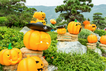 cerebrate: A lot of carved golden pumpkins and faces in the park to cerebrate the Halloween