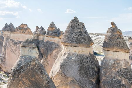 Fairy chimneys in the Pasabag velley or Monks Valley, with Highly remarkable earth pillars in Goreme, Cappadocia,Turkey.