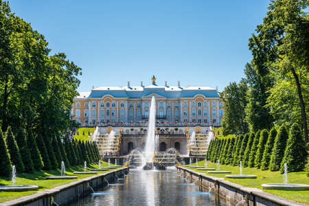 Peterhof Grand Palace and samson fountain inside of the summer palace of peter the great in Saint Pertersburg, Russia.