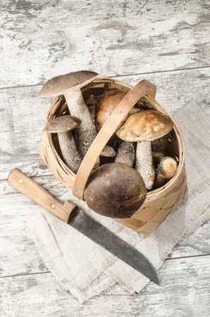 Wild mushrooms in basket. From the series Mushrooms in our kitchen photo