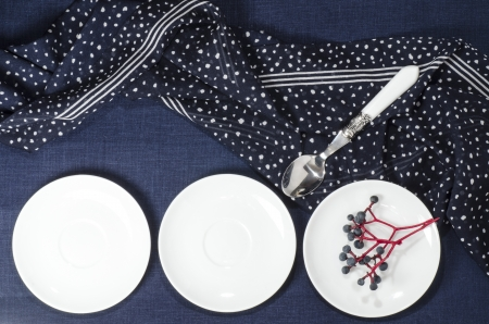 Porcelain dishes and cookies with cranberries. From series Playing with Color photo