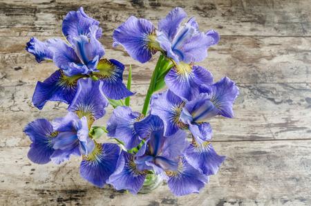 blueflag: Ramo blueflag o iris de flores en el fondo de madera. Vista de arriba
