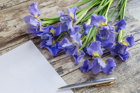 blueflag: Bouquet blueflag or iris flower on wooden background. Overhead view